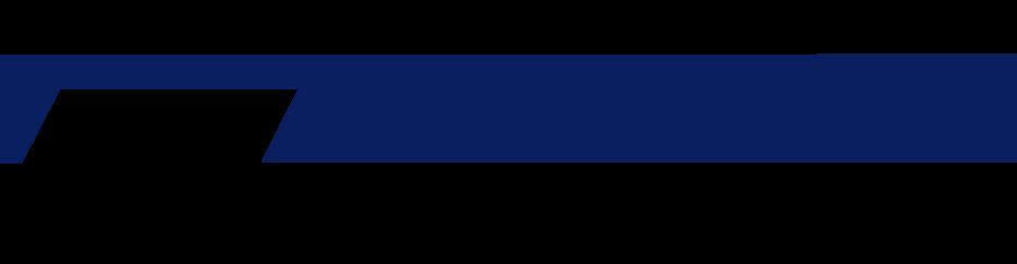 Pingot logo
